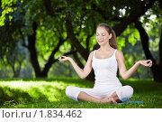 Купить «Девушка медитирует в парке», фото № 1834462, снято 25 июня 2010 г. (c) Raev Denis / Фотобанк Лори