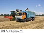 Купить «Уборка зерна», эксклюзивное фото № 1836274, снято 6 июля 2010 г. (c) Олег Хархан / Фотобанк Лори