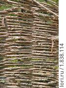 Купить «Фон из плетеных веток», эксклюзивное фото № 1838114, снято 8 июля 2010 г. (c) Алёшина Оксана / Фотобанк Лори