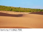 Купить «Пустыня», фото № 1842790, снято 11 января 2010 г. (c) Лифанцева Елена / Фотобанк Лори