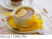 Чай с лимоном. Стоковое фото, фотограф Фадеев Антон / Фотобанк Лори