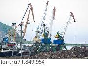 Краны в морском порту (2010 год). Редакционное фото, фотограф Анастасия Шелестова / Фотобанк Лори