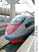Купить «Фирменный поезд», фото № 1854586, снято 20 июля 2010 г. (c) Parmenov Pavel / Фотобанк Лори