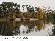Осень в Серебряном бору. Стоковое фото, фотограф Наталья Гребенюк / Фотобанк Лори