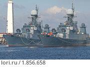 Купить «Ленинградская военно-морская база в Кронштадте. Малые противолодочные корабли проекта 1331М», фото № 1856658, снято 21 июля 2010 г. (c) Александр Тарасенков / Фотобанк Лори