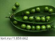 Зеленый горошек. Стоковое фото, фотограф Дубровина Елена / Фотобанк Лори