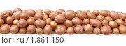 Купить «Картофельные клубни на белом фоне», фото № 1861150, снято 23 июля 2010 г. (c) Бондарь Александр Николаевич / Фотобанк Лори
