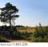 Купить «Сельский пейзаж», фото № 1861230, снято 18 июля 2010 г. (c) Полина Столбушинская / Фотобанк Лори