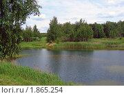 Купить «Летний пейзаж», эксклюзивное фото № 1865254, снято 10 июня 2010 г. (c) lana1501 / Фотобанк Лори