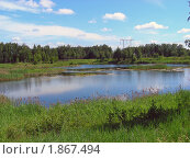 Купить «Летний пейзаж», эксклюзивное фото № 1867494, снято 10 июня 2010 г. (c) lana1501 / Фотобанк Лори