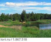 Купить «Летний пейзаж», эксклюзивное фото № 1867518, снято 10 июня 2010 г. (c) lana1501 / Фотобанк Лори