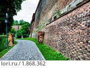 Купить «Дорога», фото № 1868362, снято 24 июля 2010 г. (c) Руслан Якубов / Фотобанк Лори