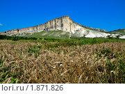 Купить «Крым», фото № 1871826, снято 22 июля 2010 г. (c) Елизавета Светилова / Фотобанк Лори