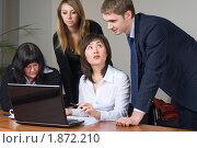 Купить «Бизнес-команда, ведущая обсуждение за ноутбуком», фото № 1872210, снято 6 декабря 2009 г. (c) Сергей Буторин / Фотобанк Лори