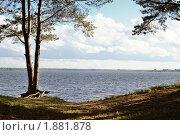 Купить «Берег», фото № 1881878, снято 13 июня 2010 г. (c) Сергей Разживин / Фотобанк Лори