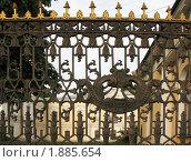 Купить «Фрагмент ограды Шереметевского дворца. Санкт-Петербург», фото № 1885654, снято 23 июня 2010 г. (c) Заноза-Ру / Фотобанк Лори
