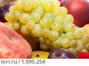 Купить «Фрукты», эксклюзивное фото № 1890254, снято 15 июля 2010 г. (c) ФЕДЛОГ / Фотобанк Лори