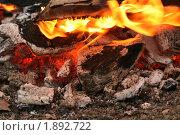 Купить «Угли в костре», фото № 1892722, снято 1 мая 2010 г. (c) Щеголева Ольга / Фотобанк Лори