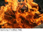 Купить «Костер. Яркое пламя», фото № 1892746, снято 1 мая 2010 г. (c) Щеголева Ольга / Фотобанк Лори