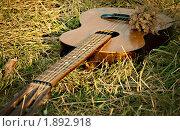 Гитара. Стоковое фото, фотограф Юлия Казакова / Фотобанк Лори