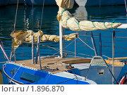 Купить «Яхта», фото № 1896870, снято 22 сентября 2018 г. (c) Владимир Хаманов / Фотобанк Лори