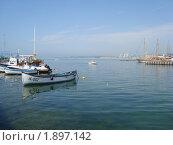 Утро в порту Болгарии (2010 год). Редакционное фото, фотограф Вишнякова Татьяна / Фотобанк Лори