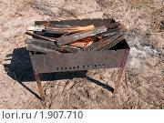 Купить «Горящие дрова в мангале», фото № 1907710, снято 2 мая 2009 г. (c) Олег Тыщенко / Фотобанк Лори