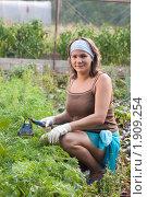 Купить «Девушка пропалывает огород», фото № 1909254, снято 15 августа 2010 г. (c) Андрей Батурин / Фотобанк Лори