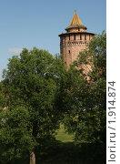 Купить «Коломенская башня», фото № 1914874, снято 5 июля 2010 г. (c) Вадим Морозов / Фотобанк Лори
