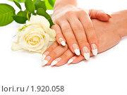 Купить «Свадебный маникюр», фото № 1920058, снято 18 июля 2010 г. (c) Сергей Дашкевич / Фотобанк Лори