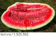 Купить «Спелый арбуз в разрезе», фото № 1925502, снято 2 августа 2010 г. (c) Надежда Келембет / Фотобанк Лори