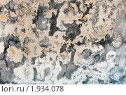 Купить «Пятна плесени на каменной стене», фото № 1934078, снято 16 мая 2010 г. (c) pzAxe / Фотобанк Лори