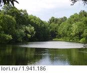 Летний пруд. Стоковое фото, фотограф Мезенцева Василиса / Фотобанк Лори