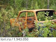 Ржавый кузов старого автомобиля брошен в лесу. Стоковое фото, фотограф pzAxe / Фотобанк Лори