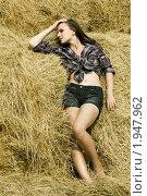 Купить «Девушка-брюнетка в сене», фото № 1947962, снято 8 августа 2010 г. (c) Елисей Воврженчик / Фотобанк Лори