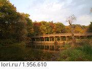 Купить «Старый мост над прудом. Осень», фото № 1956610, снято 30 октября 2008 г. (c) Ольга Липунова / Фотобанк Лори