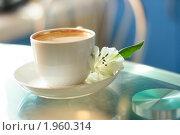 Чашка чая. Стоковое фото, фотограф Татьяна Рыбина / Фотобанк Лори