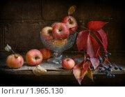 Осенний яблочно-виноградный натюрморт. Стоковое фото, фотограф Yury Ivanov / Фотобанк Лори