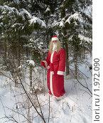 Купить «Дед Мороз в зимнем лесу», фото № 1972090, снято 1 января 2010 г. (c) Коротнев Виктор Георгиевич / Фотобанк Лори