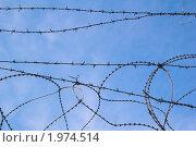 Купить «Колючая проволока на фоне голубого неба», фото № 1974514, снято 18 июля 2010 г. (c) Игорь Соколов / Фотобанк Лори