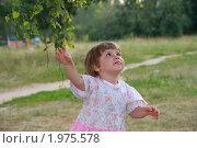 Любопытная девочка. Стоковое фото, фотограф Сергей Зуев / Фотобанк Лори