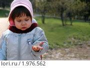 Маленькая девочка кормит птиц в парке (2010 год). Редакционное фото, фотограф Insomnia / Фотобанк Лори