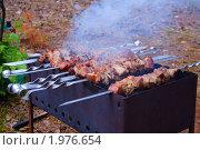 Купить «Приготовление шашлыка», фото № 1976654, снято 21 июня 2009 г. (c) DENIS KARPOV / Фотобанк Лори