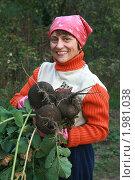 Купить «Вот такая нынче уродилась редька», фото № 1981038, снято 14 сентября 2010 г. (c) Александр Мишкин / Фотобанк Лори
