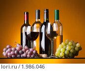 Купить «Бутылки, бокалы с вином и виноград», фото № 1986046, снято 19 сентября 2010 г. (c) Антон Балаж / Фотобанк Лори