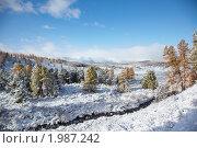 Алтай зимой. Стоковое фото, фотограф Serg Zastavkin / Фотобанк Лори