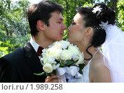 В приближении поцелуя. Стоковое фото, фотограф Евгений Курлыкин / Фотобанк Лори