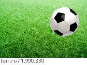 Купить «Футбольный мяч», фото № 1990330, снято 16 сентября 2010 г. (c) Василий Нижников / Фотобанк Лори