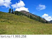 Алтай. Стоковое фото, фотограф Елена Лисицина / Фотобанк Лори
