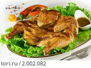 Купить «Цыпленок табака», эксклюзивное фото № 2002082, снято 22 сентября 2010 г. (c) Лисовская Наталья / Фотобанк Лори